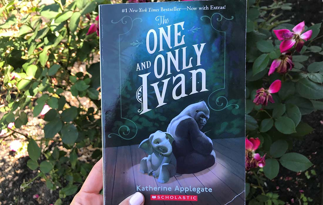 Book Recommendation: The One and Only Ivan